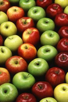 зеленые, желтые, красные яблоки для производства пектина яблочного дело вкуса